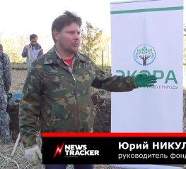 Дубы и редкие деревья высадили в урочище Мутнянка на эко-арт-фестивале в Ставрополе