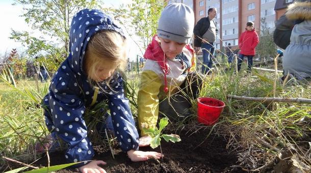 В урочище «Мутнянка» ставропольские активисты высадили деревья