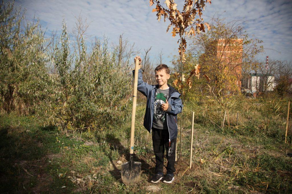 Посадка деревьев в рамках эко-арт фестиваля «Зеленое сердце»