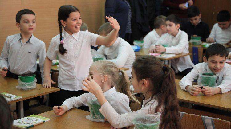 «Детская дубрава» в Пятигорске