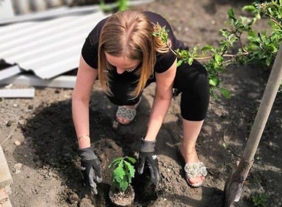 Дети самостоятельно сажают деревья